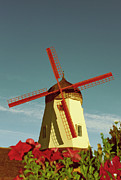 Old Mills Prints - Old Windmill  Print by Paul Topp