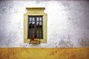 Flowery Prints - Old Window Print by Carlos Caetano