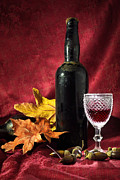 Leaves Art - Old Wine Bottle by Carlos Caetano
