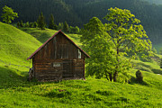 Rural Scenes Prints - Old wood house up in the mountains Print by Toma Bonciu