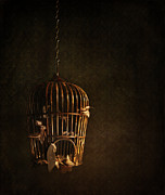 Eerie Photo Posters - Old wooden bird cage with feathers Poster by Sandra Cunningham