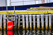 Tied Metal Prints - Old wooden pier in Newfoundland Metal Print by Elena Elisseeva
