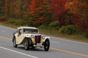 Transportation Originals - Old Yeller 8168 by Guy Whiteley