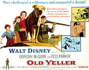 1957 Movies Photo Prints - Old Yeller, Kevin Corcoran, Beverly Print by Everett
