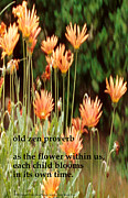 Richard Donin Metal Prints - Old Zen Proverb Metal Print by Richard Donin