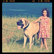 Child Photos - #oldenglishmastiff #mastiff #child #kid by Rosalba Matta Machado