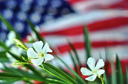 American Flag Prints - Oleander Flowers Print by Lee Sie Photography