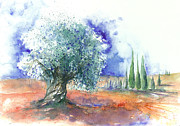 Jitka Krause - Olive Tree