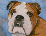 English Bulldog Paintings - Oliver the English Bulldog by Amy Pilafas