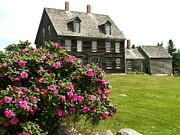 Andrew Wyeth Photo Posters - Olson House with Flowers Poster by Theresa Willingham