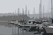 Sailboats Docked Digital Art Framed Prints - Olympia...At Percival Landing I Framed Print by Terri Thompson