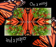 Cathy Beharriell Metal Prints - On A Wing and a Prayer Metal Print by Cathy  Beharriell