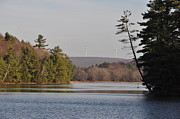 Poconos Art - On Bear Creek Lake by Bill Cannon
