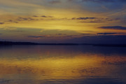 Yellow Photographs Prints - On Golden Pond Print by Phill  Doherty