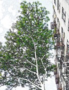 New York City Fire Escapes Posters - On Overlook Terrace 2 Poster by Sarah Loft