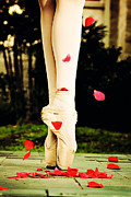 Dance Ballet Roses  Posters - On Point Poster by Heather Arsement
