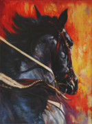 Black Stallions Prints - On The Black Print by Harvie Brown