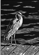 Scratchboard Paintings - On the Dock in the Bay by Diane Cutter