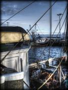Ropes Prints - On the Docks in Provincetown Print by Tammy Wetzel
