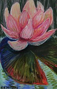 Lily Pastels Posters - On the Lilypad Poster by Emily Michaud