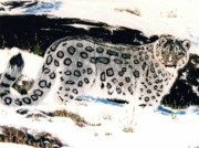 Leopards Paintings - On The Move by Kevin Cromartie