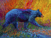 Black Bear Art - On The Move by Marion Rose
