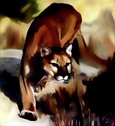 Mountain Lion Framed Prints - On the prowl Framed Print by Vic Weiford