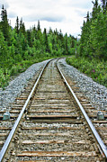 Railroads Photos - On the Rails by Heather Applegate