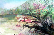 Tree Art Print Drawings Framed Prints - On the River Framed Print by Mindy Newman