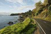 Black Top Photo Prints - On The Road Around The Coromandel Print by Dawn Kish
