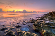 Sunset Greeting Cards Prints - On The Rocks Print by Debra and Dave Vanderlaan