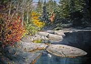 State Paintings - On the Rocks by Shirley Braithwaite Hunt