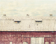 Pennsylvania Barns Posters - On the Roof Poster by Lisa Russo