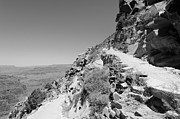 South Kaibab Trail Prints - On the South Kaibab Trail BW Print by Julie Niemela