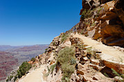South Kaibab Trail Prints - On the South Kaibab Trail Print by Julie Niemela