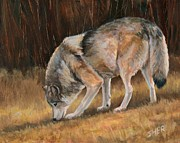 Sheri Gordon - On the Trail - Wolf