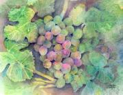 Purple Grapes Paintings - On The Vine by Arline Wagner