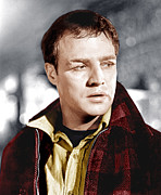 1950s Movies Acrylic Prints - On The Waterfront, Marlon Brando, 1954 Acrylic Print by Everett