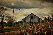 Barn Digital Art Metal Prints - On The Wings Of Change Metal Print by Lois Bryan