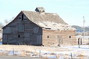 Barn Lots Photos - Once in a Lifetime by Wanda Jesfield