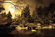 Swans Art - Once Upon A Time Under The Moon Lit Night . Golden Cut . 7D12782 by Wingsdomain Art and Photography