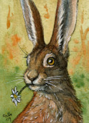 Hare Posters - One daisy for you - funny rabbits Poster by Svetlana Ledneva-Schukina