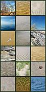 Photo Collage Metal Prints - One Day at the Beach ll Metal Print by Michelle Calkins