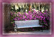 Park Benches Photos - One Day in Savannah by Carol Groenen