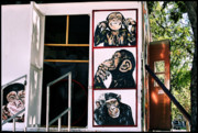 Lucky Larue Art - One monkey to the other by Lucky LaRue