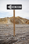 Directional Posters - One Way Sign Along Washed Out Road Poster by Paul Edmondson