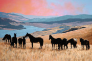 Oils Paintings - One with the Herd by Liz Mitten Ryan