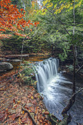 Aaron Campbell - Oneida Falls October 2012