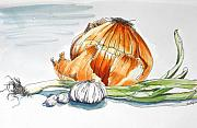 Garlic Framed Prints - Onions and Garlic Framed Print by D K Betts