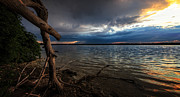 Driftwood Photos - Onondaga Lake by Everet Regal